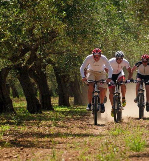 costa-navarino_0003_cycling-3-800x500