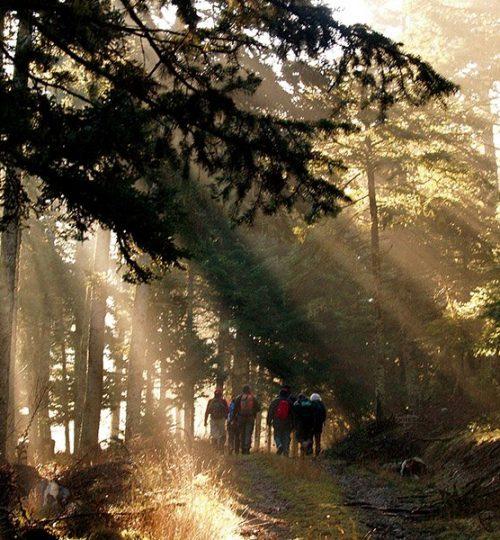 exosports-hiking-4
